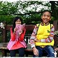 角板山賞梅趣1040125IMG_6653.JPG