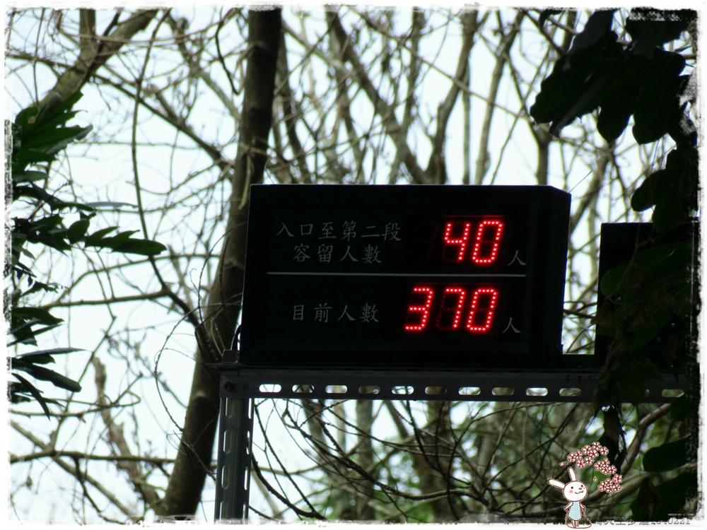 竹崎天空步道1040221IMG_6433.JPG