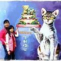 旺萊山鳳梨酥觀光工廠菁埔貓彩繪村1040221IMG_7303.JPG