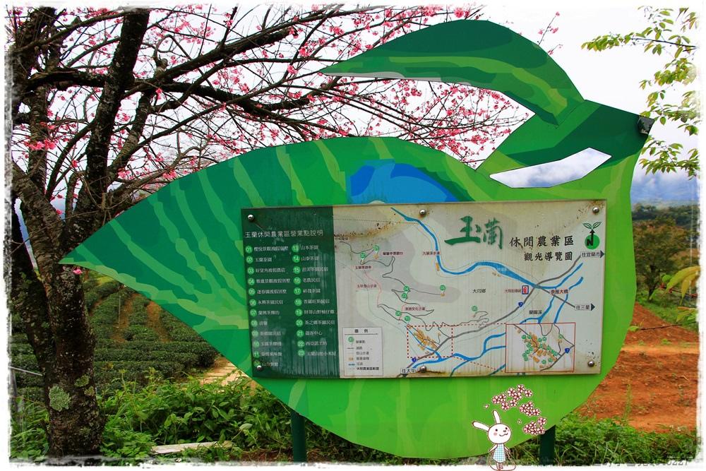 玉蘭休閒農業區by小雪兒1040227IMG_7420.JPG
