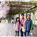 中華大學紫藤花1040322by小雪兒IMG_8282.JPG