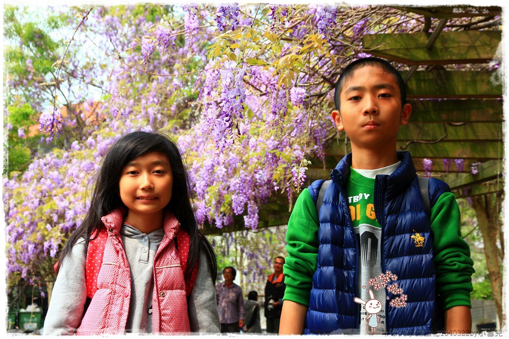 中華大學紫藤花1040322by小雪兒IMG_8315.JPG