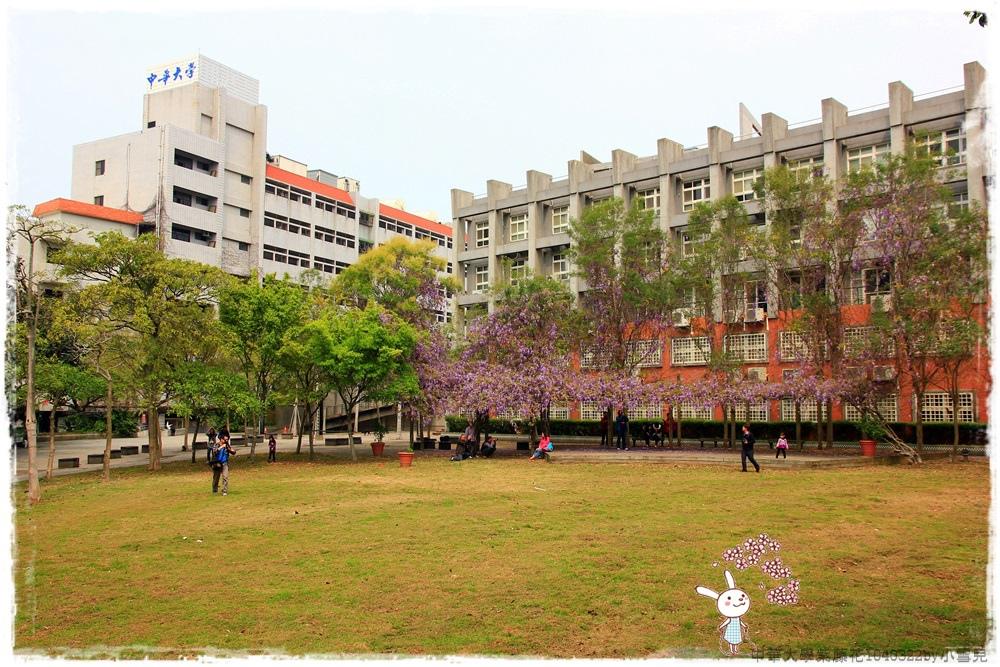 中華大學紫藤花1040322by小雪兒IMG_8361.JPG