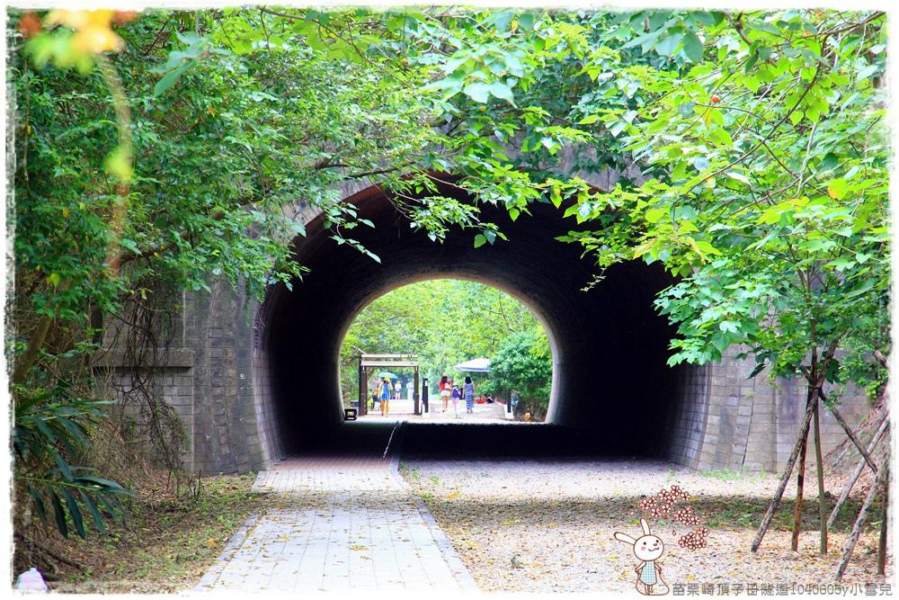 苗栗崎頂子母隧道1040605y小雪兒IMG_9255.JPG