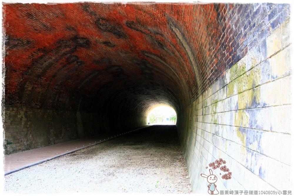 苗栗崎頂子母隧道1040605y小雪兒IMG_9271.JPG