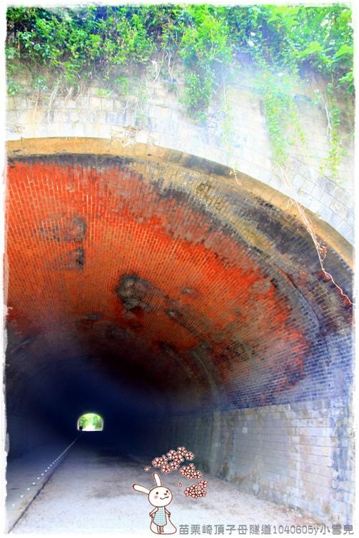 苗栗崎頂子母隧道1040605y小雪兒IMG_9296.JPG