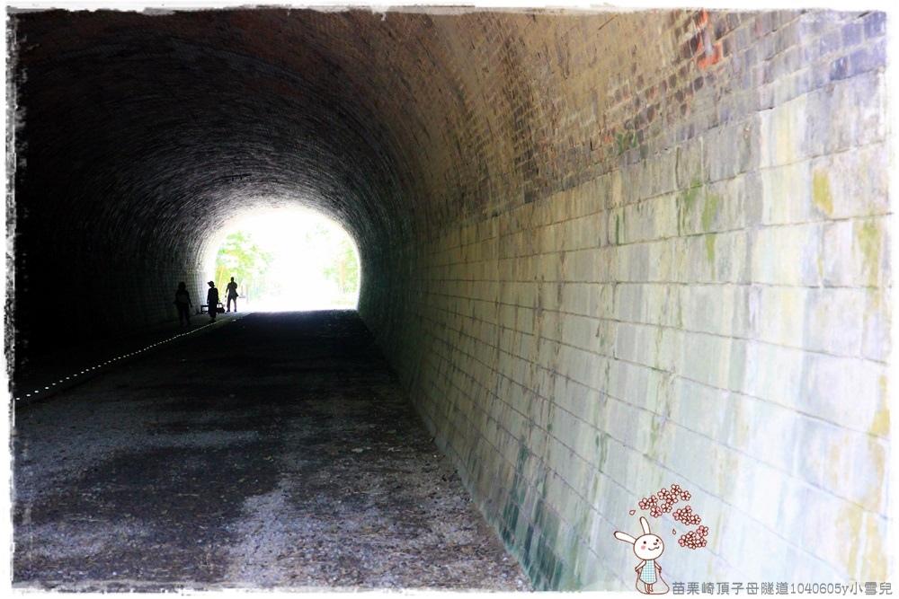 苗栗崎頂子母隧道1040605y小雪兒IMG_9298.JPG