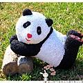 2015新竹客家文化嘉年華by小雪兒的窩1041025IMG_4627 070.JPG