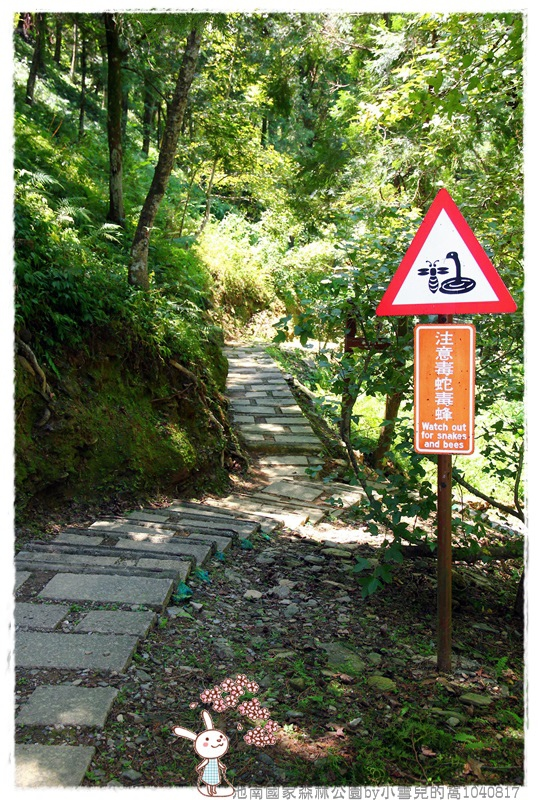 池南國家森林公園by小雪兒的窩1040817IMG_0649 018.JPG
