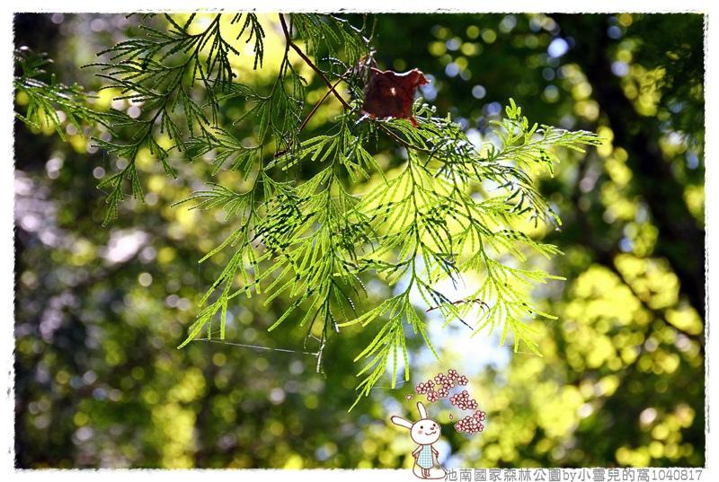 池南國家森林公園by小雪兒的窩1040817IMG_0650 019.JPG