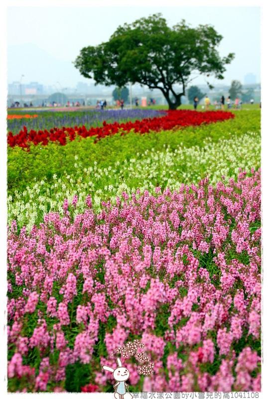 幸福水漾公園by小雪兒的窩1041108IMG_4888 015.JPG