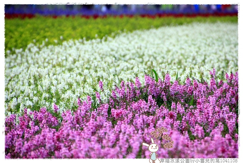 幸福水漾公園by小雪兒的窩1041108IMG_4922 034.JPG