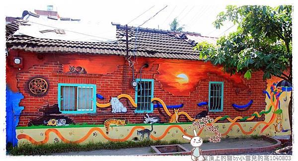 屋頂上的貓by小雪兒的窩1040803IMG_0290 007.JPG