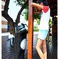 屋頂上的貓by小雪兒的窩1040803IMG_0304 014.JPG