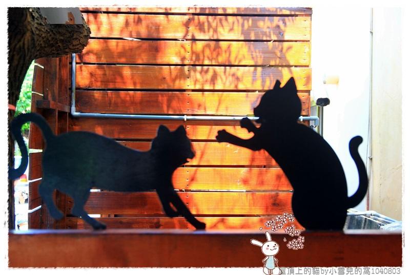 屋頂上的貓by小雪兒的窩1040803IMG_0311 018.JPG