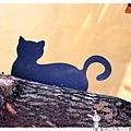 屋頂上的貓by小雪兒的窩1040803IMG_0321 026.JPG