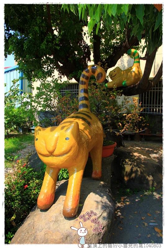 屋頂上的貓by小雪兒的窩1040803IMG_0330 033.JPG