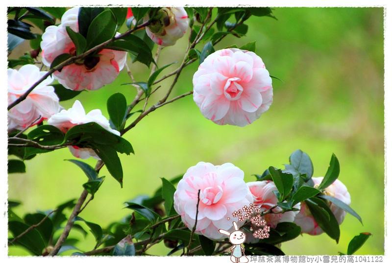 坪林茶葉博物館by小雪兒的窩1041122IMG_5239 114.JPG