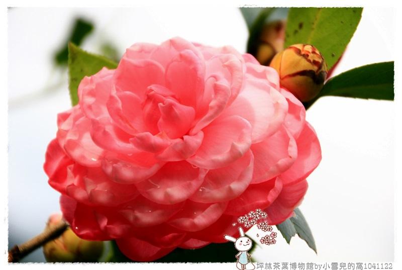 坪林茶葉博物館by小雪兒的窩1041122IMG_5259 121.JPG
