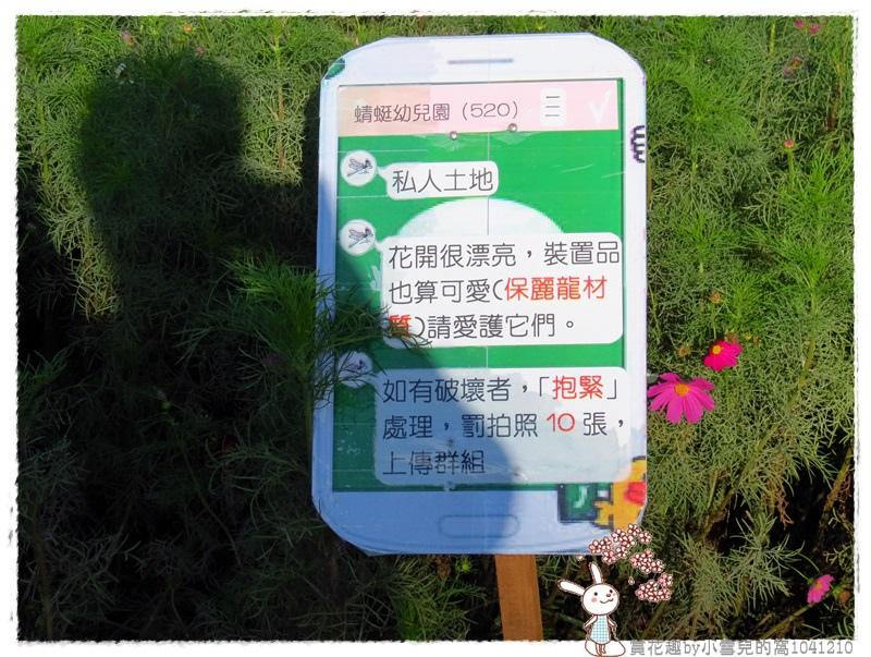 賞花趣by小雪兒的窩1041210IMG_2319 004.JPG