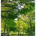 暑假第二天入住薩爾茲堡by小雪兒的窩1040817IMG_1001 072.JPG