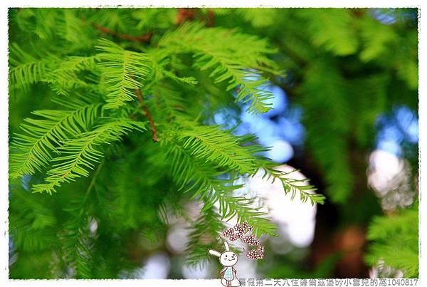 暑假第二天入住薩爾茲堡by小雪兒的窩1040817IMG_1044 085.JPG