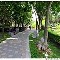 龍潭客家園區虎頭山1050522IMG_2983.JPG