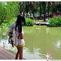龍潭客家園區虎頭山1050522IMG_2987.JPG