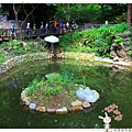 龍潭客家園區虎頭山1050522IMG_7539.JPG