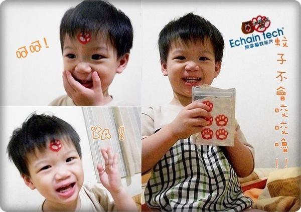 ECHAIN驅蚊貼片 (8).jpg