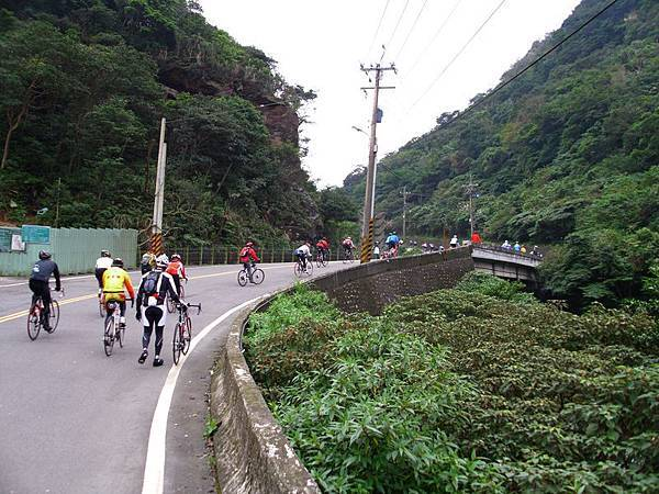 2011陽金P字山道014.JPG