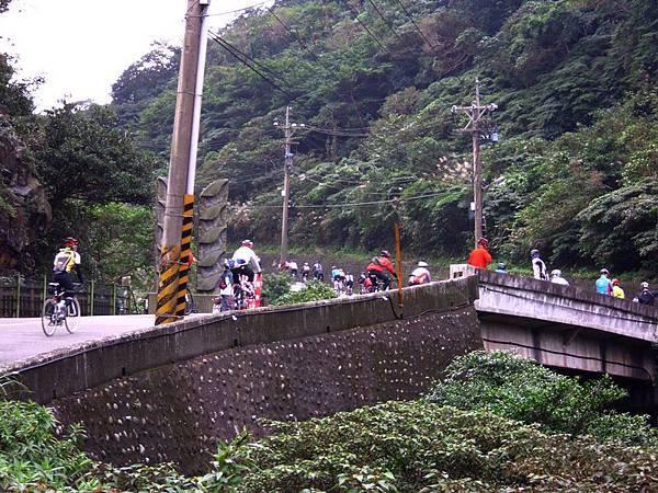 2011陽金P字山道015.JPG