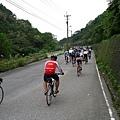 2011陽金P字山道016.JPG