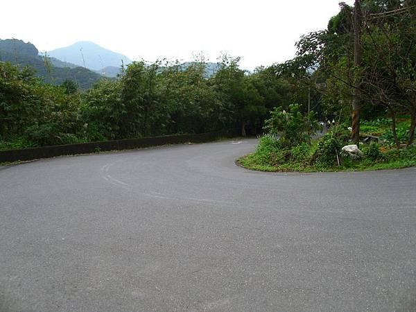 2011陽金P字山道035.JPG