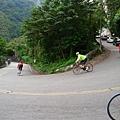2011陽金P字山道040.JPG