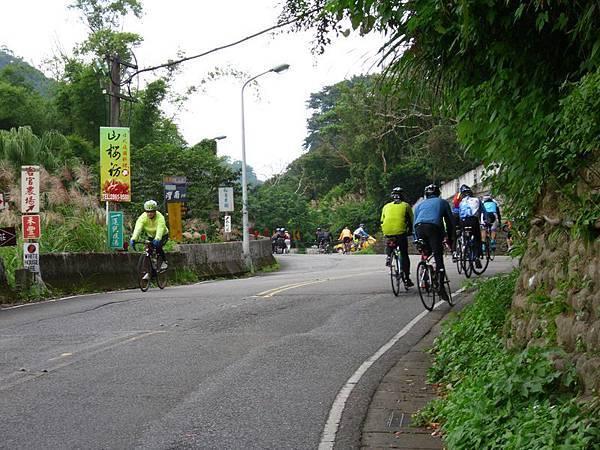 2011陽金P字山道041.JPG