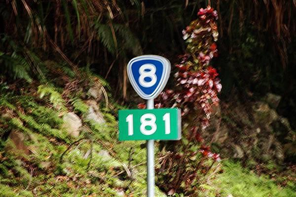 1000411環島第三天0129.JPG