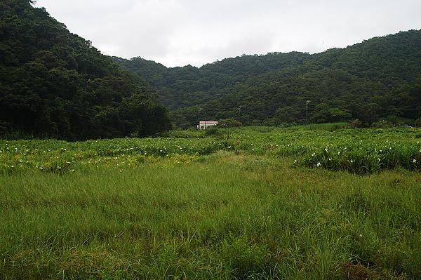 牡丹東源-9