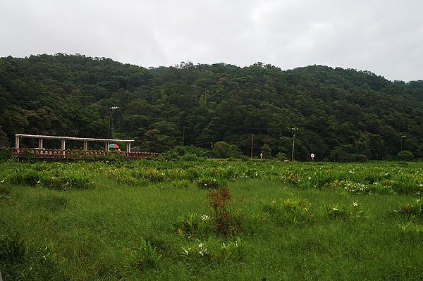 牡丹東源-10