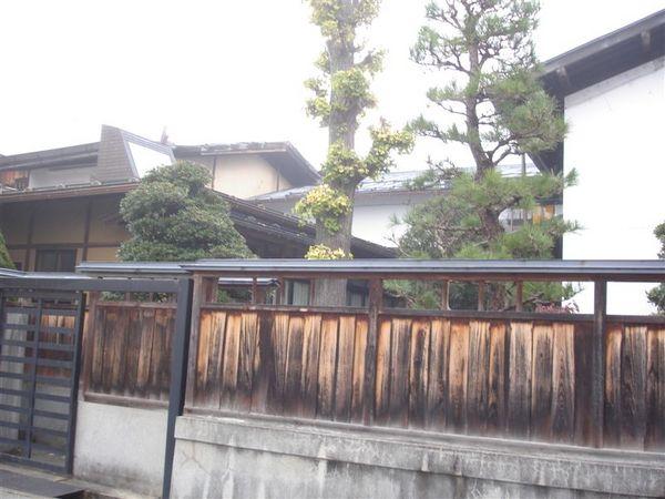 高山015.JPG