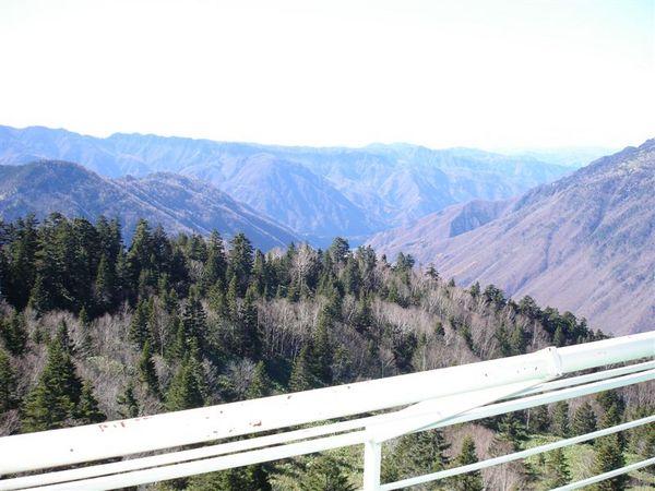 高山037.JPG