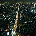 從101鳥瞰台北-3.jpg