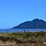 海灘 (4)