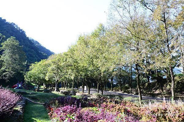 溪州公園 (15).JPG