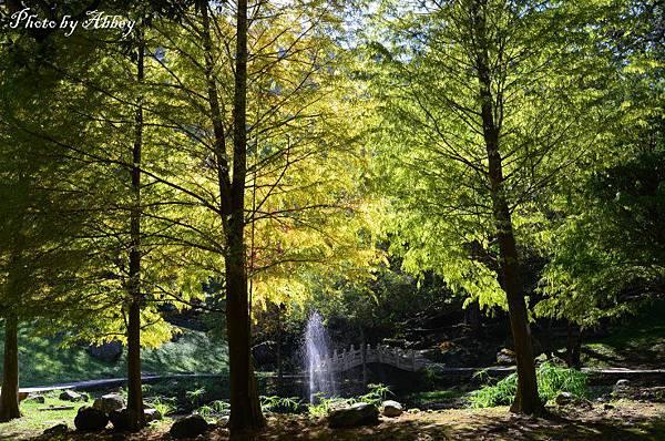 溪州公園 (17).JPG