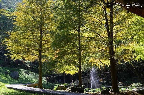 溪州公園 (18).JPG
