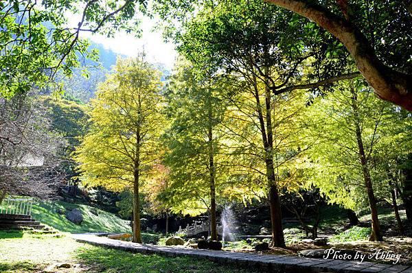 溪州公園 (19).JPG