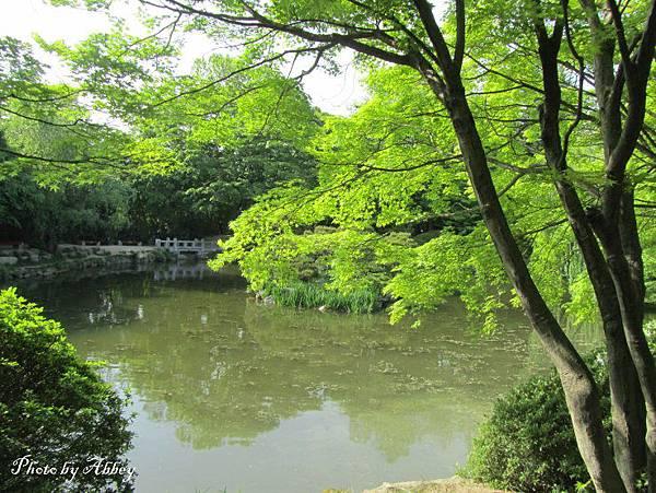 佛國寺 (2).JPG