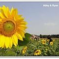 newDSC04904.jpg