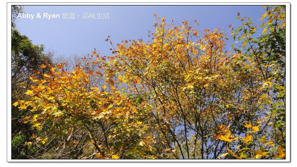 newDSC05985.jpg